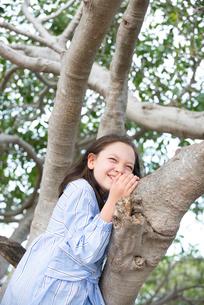 木登りをしているハーフの女の子の写真素材 [FYI01706898]