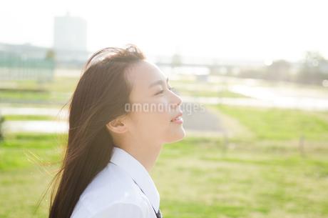 女子学生の横顔の写真素材 [FYI01706923]