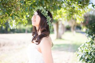森の中に立っているウェディングドレス姿の女性の写真素材 [FYI01707073]