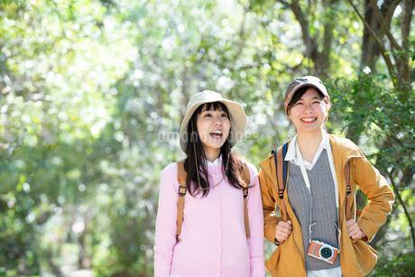 森の中をハイキングしている女性2人の写真素材 [FYI01707077]