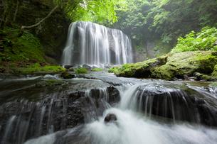 新緑の達沢不動滝の写真素材 [FYI01707278]