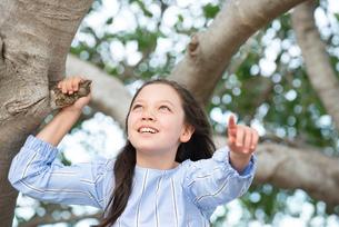 木の上で指をさしているハーフの女の子の写真素材 [FYI01707636]