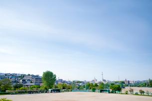 青空と野球場の写真素材 [FYI01708176]