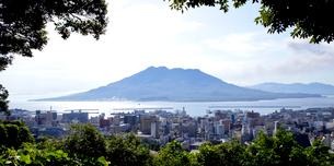 城山公園から望む桜島の写真素材 [FYI01708387]