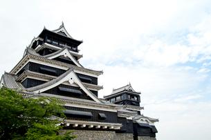 聳える熊本城の写真素材 [FYI01708517]