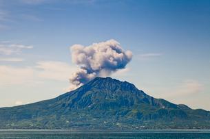 煙り吐く桜島の写真素材 [FYI01708528]