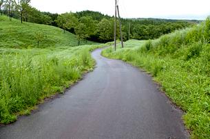 牧草地を走る一本道の写真素材 [FYI01708548]