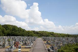 夏雲と墓地の写真素材 [FYI01708761]
