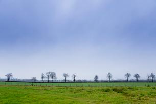 青空と冬の草原の写真素材 [FYI01708934]
