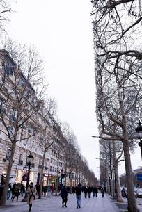人々が行き交う冬のシャンゼリゼ大通りの写真素材 [FYI01709043]