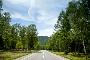 高原を走る道路の写真素材 [FYI01709112]