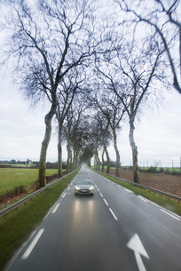 真っすぐに走るプラタナス並木の自動車道の写真素材 [FYI01709399]