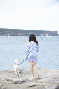 海を眺めている女の子と犬の後ろ姿の写真素材 [FYI01709491]