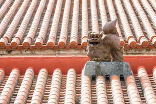 石垣島の赤瓦屋根の上のシーサーの写真素材 [FYI01709570]