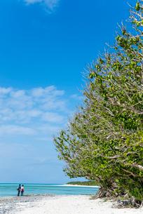 遠くに後ろ姿の男女が立つ真っ青な空と海の竹富島のカイジ浜の写真素材 [FYI01709573]