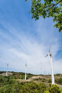 新緑越しに見る青山高原の風力発電風車の写真素材 [FYI01709588]