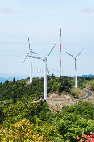 新緑の青山高原の風力発電風車の写真素材 [FYI01709648]