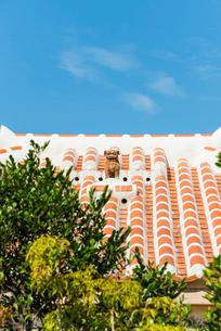竹富島の赤瓦屋根の上のシーサーの写真素材 [FYI01709685]