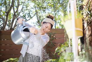 庭の植物に水をあげている女性の写真素材 [FYI01709797]