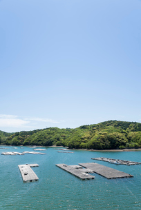 かき養殖イカダが浮かぶ鳥羽生浦湾の写真素材 [FYI01709819]