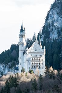 岩山を背景にしたノイシュヴァンシュタイン城の写真素材 [FYI01709831]