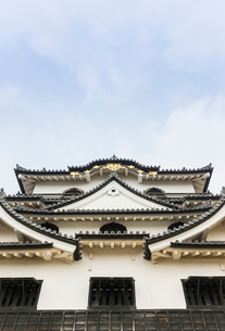 見上げた彦根城の写真素材 [FYI01709874]
