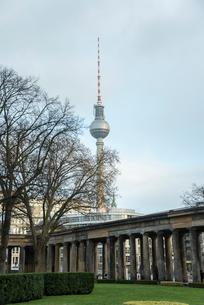 博物館島より樹木越しに見るベルリンのテレビ塔の写真素材 [FYI01709880]