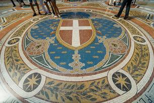ヴィットリオ・エマヌエーレ2世ガレリアの床モザイク画の写真素材 [FYI01709944]