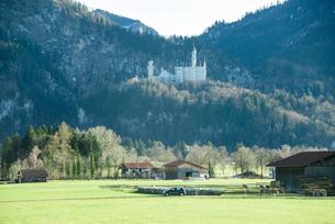 ノイシュヴァンシュタイン城を見る風景の写真素材 [FYI01709992]