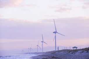 海辺に立ち並ぶ風力発電塔の写真素材 [FYI01710054]