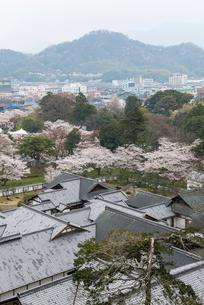 彦根城天守から望む佐和山の写真素材 [FYI01710160]