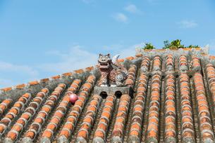 竹富島の赤瓦屋根の上のシーサーの写真素材 [FYI01710177]