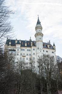 冬の樹木越しに見るノイシュヴァンシュタイン城の写真素材 [FYI01710194]