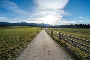 牧草地帯を走る柵のある田舎道の写真素材 [FYI01710356]