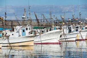 寝屋漁港の写真素材 [FYI01710375]