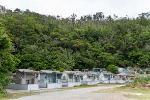 森に囲まれた沖縄の墓の写真素材 [FYI01710381]