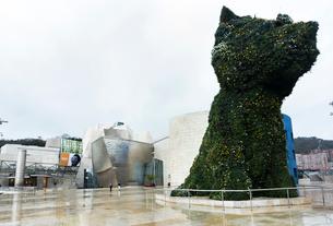 ジェフ・クーンズの作品「子犬」越しに見るビルバオのグッゲンハイム美術館の写真素材 [FYI01710456]