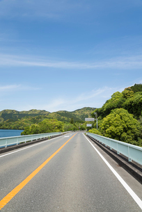 新緑の中湖沿いを走る道路の写真素材 [FYI01710458]