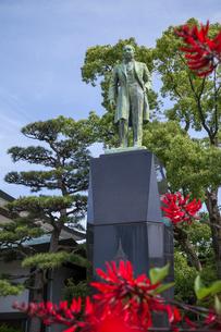 デイゴの花越しに見るタイ国王ラーマ5世の銅像の写真素材 [FYI01710533]