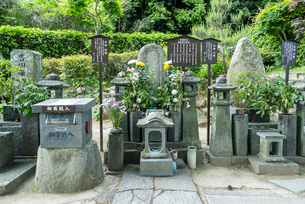 吉田松陰の墓の写真素材 [FYI01710613]