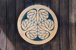 葵の紋の写真素材 [FYI01710616]