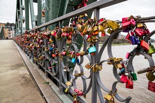 マイン川にかかるアイゼルナー橋にかけられた南京錠の写真素材 [FYI01710617]