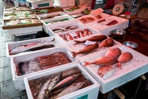 朝市で売られる鮮魚類の写真素材 [FYI01710632]