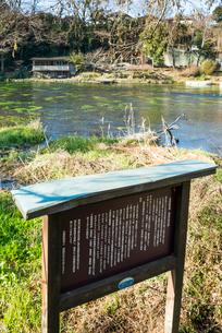柿田川湧水群の立て看板越しに川を見るの写真素材 [FYI01710685]