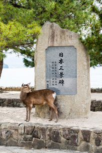 宮島桟橋広場の日本三景碑の写真素材 [FYI01710750]