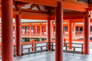 厳島神社客神社祓殿より本社を見るの写真素材 [FYI01710795]