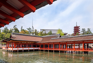 厳島神社客神社と五重塔を見る風景の写真素材 [FYI01710802]
