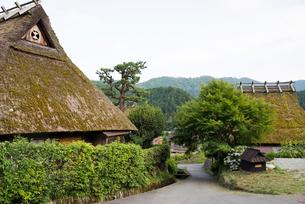茅葺き屋根の民家集落内の小道の写真素材 [FYI01710809]