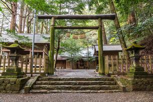 鳥居越しに見る天岩戸神社東本宮拝殿の写真素材 [FYI01710828]
