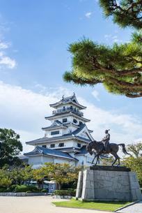 マツの枝越しに今治城天守と藤堂高虎像を見るの写真素材 [FYI01710853]